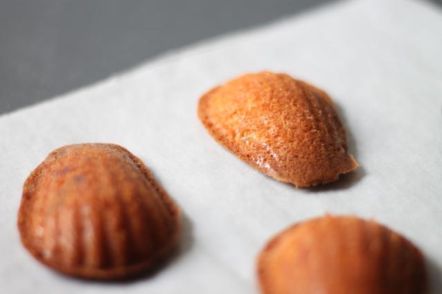 madeleines recipes