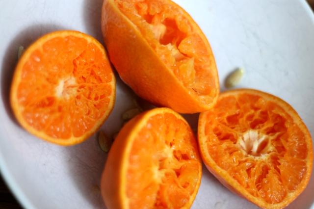 homemade orangeade recipe