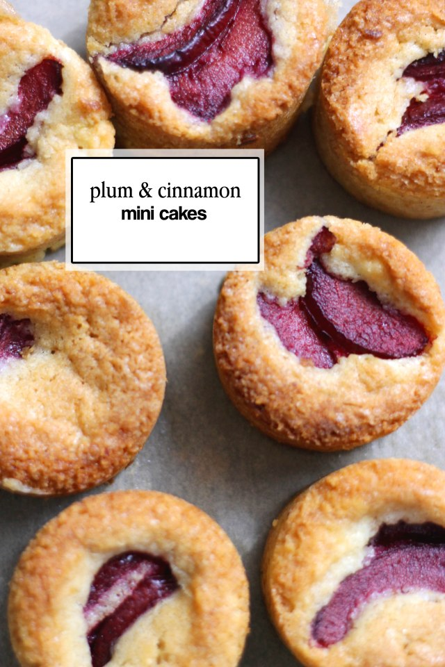 Plum and cinnamon cake | Sugar Thumb